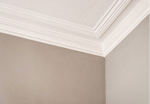 Nailsea Plastering and Coving